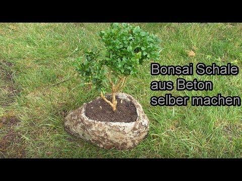 03:42 Bonsaischale Aus Beton Kreativ Und Günstig Selber Machen U2013 DIY Beton Garten  Deko / Anleitung