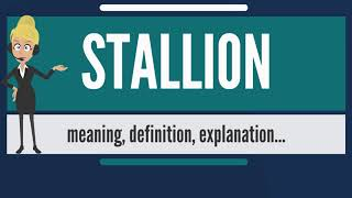 What is STALLION? What does STALLION mean? STALLION meaning, definition & explanation