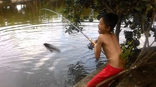 Câu Cá Giải Trí - Hai Cậu Cháu Cần Thủ Câu Cá Bằng Cần Câu Máy Giá Rẻ