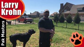Fun Rottweiler Training | E Collar, Rewards, and Direction