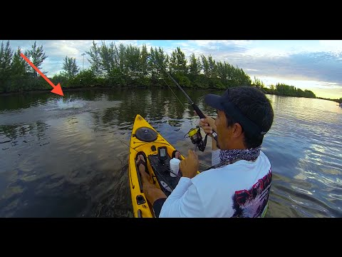 Kayak Fishing- Snook 39