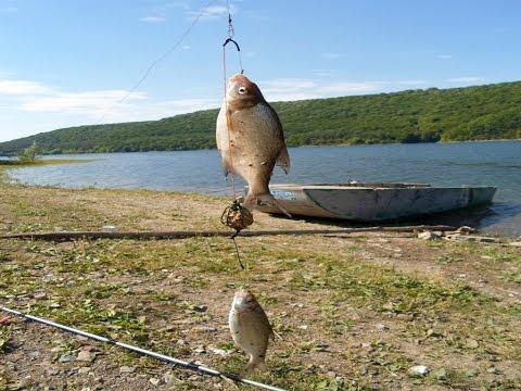рыбалка на днестре бесплатная