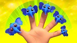 Elephant Finger Family   Kids Songs & Nursery Rhymes   Kindergarten Cartoons by Kids Baby Club