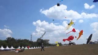 World Kite Festival - Visit Malaysia Year 2014 Event - RC Remote Control Kites Flying Competition