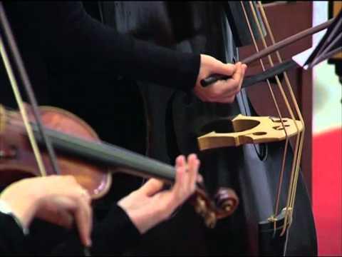 Nereydas - Vivaldi - Concerto in Sol minore RV 578