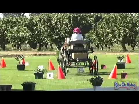 50C Dana Moore Intermediate Single Pony Cones at Shady Oaks CDE 2011