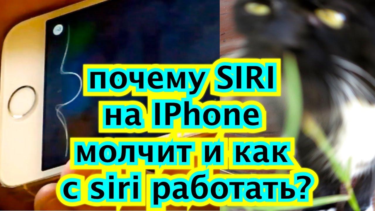Почему не работает на айфоне сири