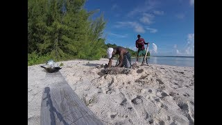 Bahamas 2018: yellowtail snapper catch & cook
