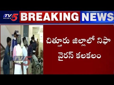 కేరళ టు ఏపీ..విస్తరిస్తున్న నిఫా | Nipah Virus Tension in Chittoor | TV5 News