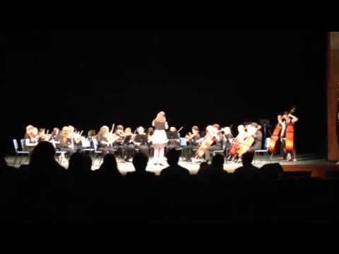 Woodmont High School Orchestra does Rolling In The Deep (or