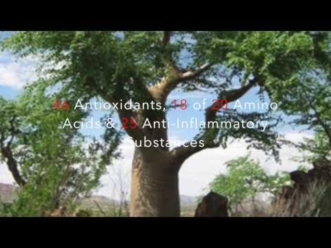 Moringa Oleifera for Optimal Health and Fitness - Testimony