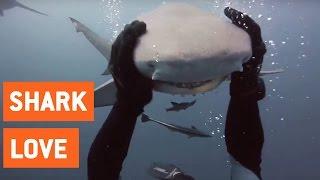 Scuba Diver and Shark Are Best Friends | Shark Love