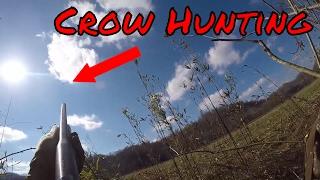 Crow Hunting 2017