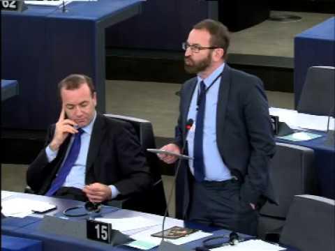 Felszólalás A magyarországi helyzet című vitában