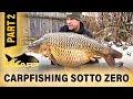 K Karp   Carp Fishing TV   CARPFISHING SOTTO ZERO   Parte 2