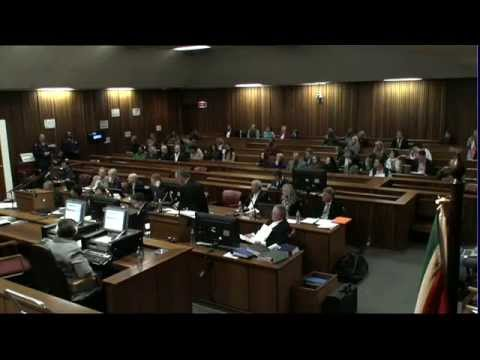 Oscar Pistorius Trial: Wednesday 2 July 2014, Session 4