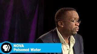 POISONED WATERS on NOVA | Q&A with Scientists and Filmmakers | PBS