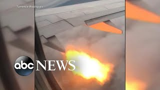 Plane passengers see flames after bird strike l ABC News