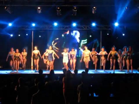 Coreografia Egipcias 2013 - Pellegrini