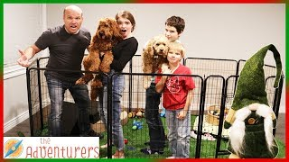 Gnomes Indoor Dog Park Prank I That YouTub3 Family The Adventurers