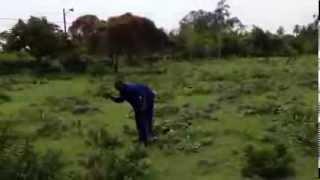 Limpieza del Jardín Botánico de la isla de IBO