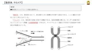 遺伝情報の発現(発展)