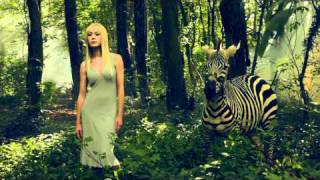 Drew Gardner Zebra Photo - Epic Fashion BTS video