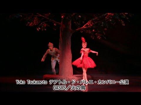 あいちトリエンナーレ2013 祝祭ウィーク事業 Yoko Tsukamoto テアトル・ド・バレエ・カンパニー公演 OASIS/火の鳥