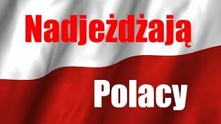 Wersja 1.1- Polskie czołgi w World of Tanks