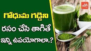 సర్వ రోగ నివారిణి గోధుమ గడ్డి రసం | Health Benefits Of Wheat Grass Juice | YOYO TV Channel