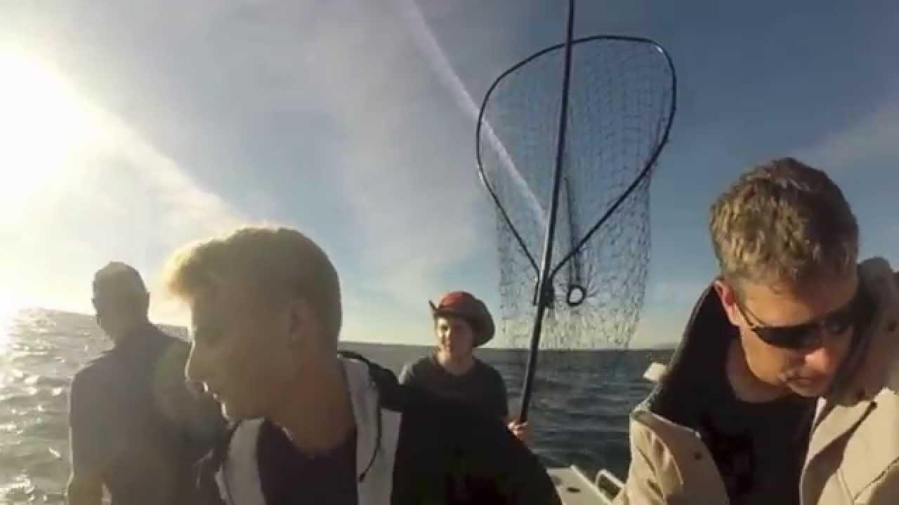 for Salmon fishing san francisco
