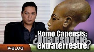 Homo Capensis, ¿Una especie extraterrestre?