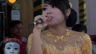 download lagu Suket Teki - Campursari Supra Nada Live In Pengkok gratis