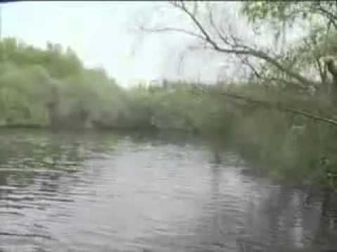 Korda State Of The Art Underwater Carp Fishing Part 3