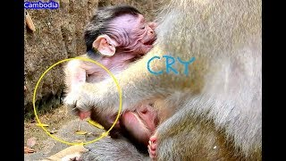 Baby Cry ! We D0 N0T KN0W Again & Again Pity Baby Valentin !n Warmly Milk But Mom Pushed Him 0ut