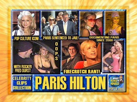 Paris Hilton: Pop Culture Phenom