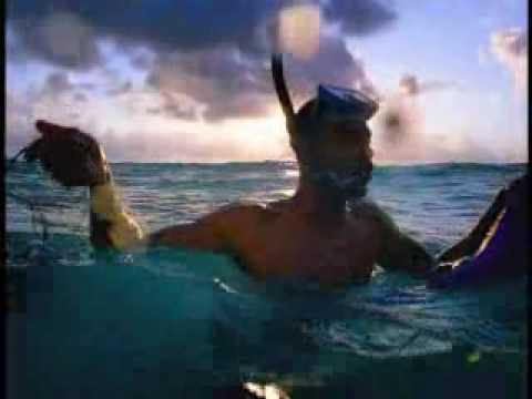 Barbados Tourism Commercial