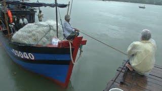 Tin Bão Khẩn Cấp: Quảng Ngãi kêu gọi tàu thuyền vào bờ