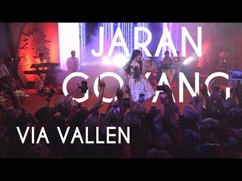 VIA VALLEN - Jaran Goyang   HIGH QUALITY (Audio & Video)   By EVIO MULTIMEDIA