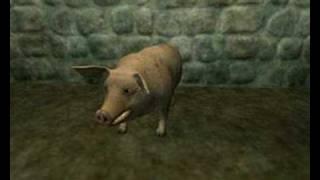 Vídeo 68 de The Arrogant Worms