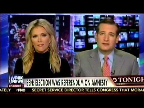 Sen. Ted Cruz Discusses Stopping President Obama's Illegal Amnesty on the Kelly File