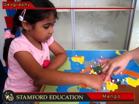 Stamford Education Mango Europe 2