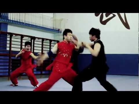 Beijing Wushu Team - 2012 Tour