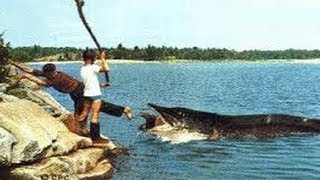 10 Shocking Fishing Moments Caught On Camera!  from THE MAGNUM