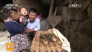 20151225 乡土  千年古道美食飘香