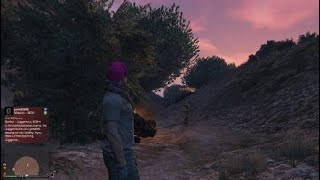 Grand Theft Auto V i servived lol 3