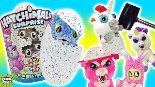 New HATCHIMALS Surprise! Twin Babies! With Feisty Pets and Dookie The Unicorn! Doctor Squish