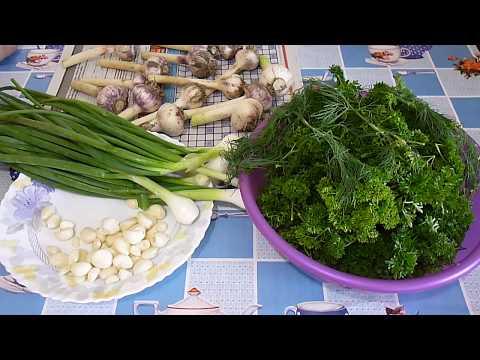 Приправа с чесноком и зеленью на зиму / Season with garlic and herbs for the winter