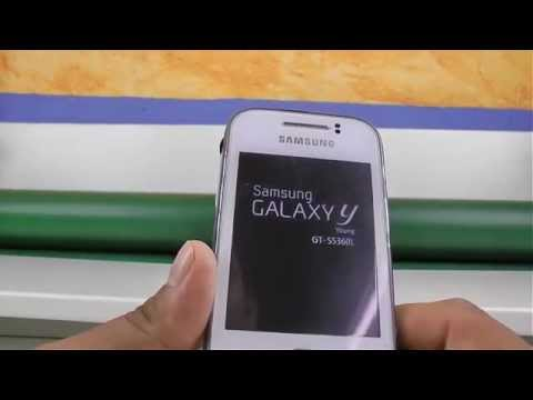Root // Samsung Galaxy Y (Young) GT-S5360L // Tutorial Basico