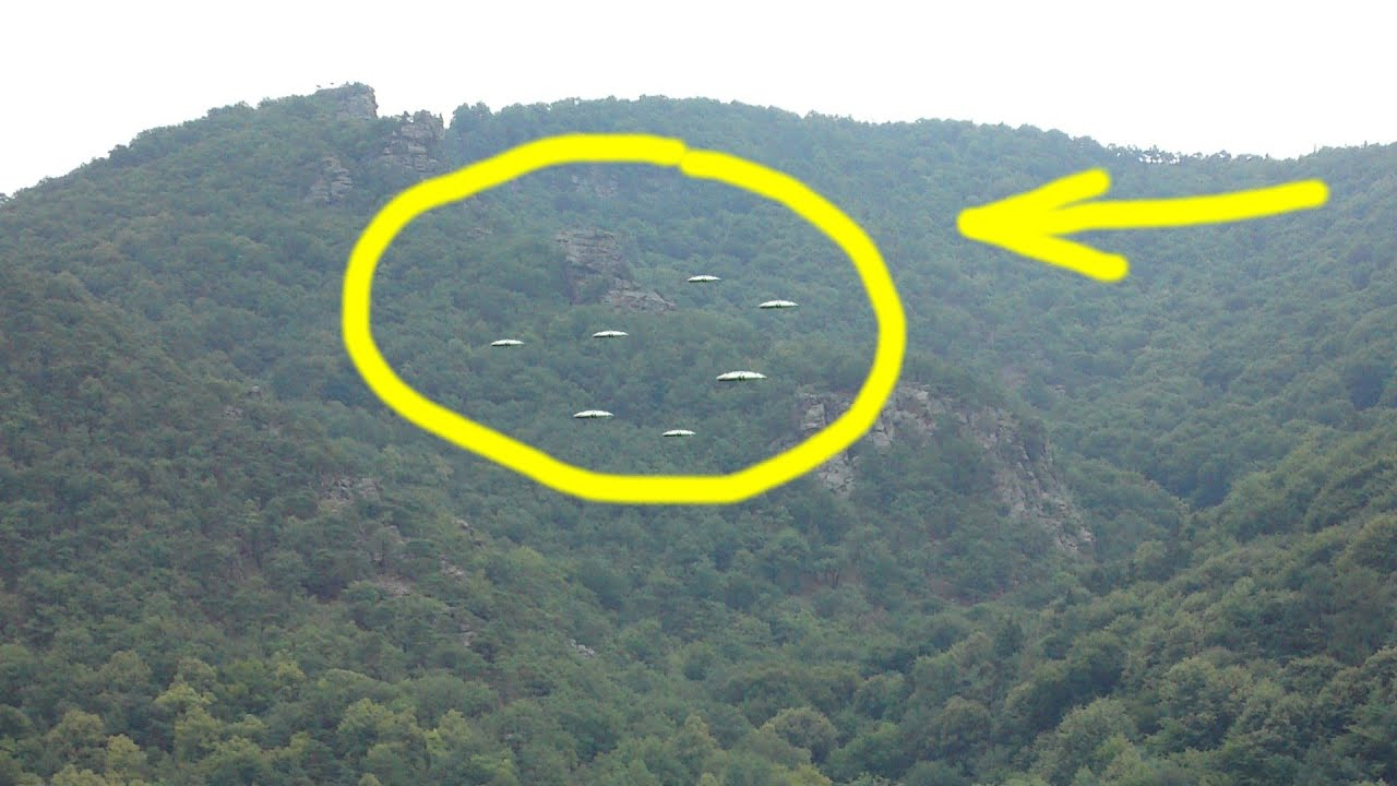 Latest UFO Sightings Disc Shaped UFO's Captured Above A Forrest